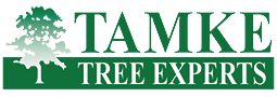 Tamke Tree Experts